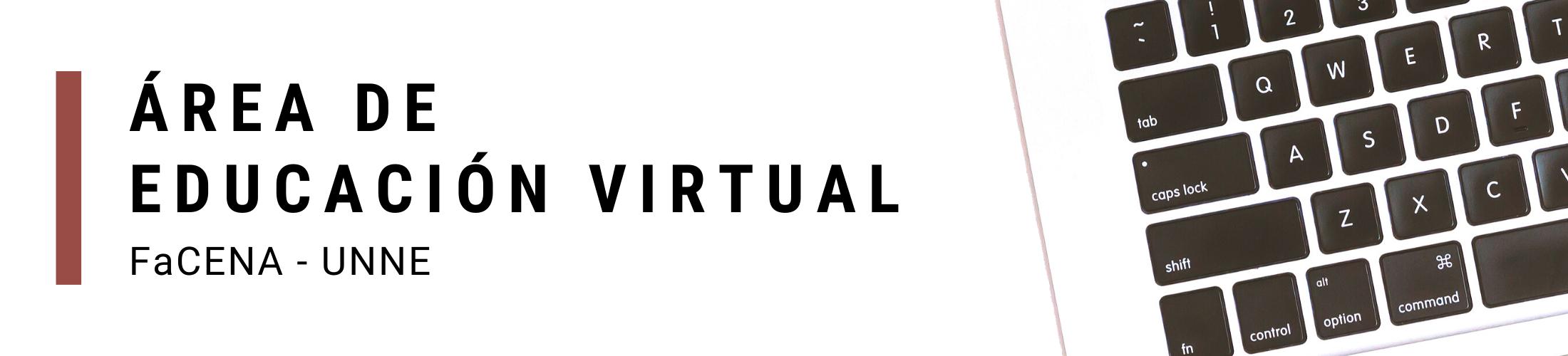 Área de Educación Virtual